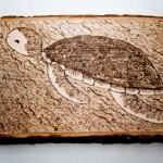 ahsap-yakma-genc-kaplumbaga