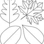 yaprak-kalplari-2