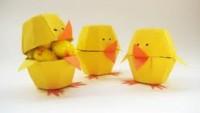 Yumurta Kolisinden Yapılanlar