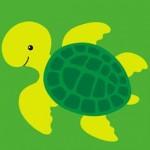 sevimli kaplumbağa resmi