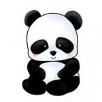 Sevimli panda resmi sevimli maymun resmi sevimli kutup ayisi resmi