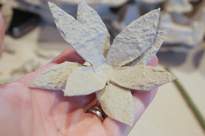eg-carton-flowers-5