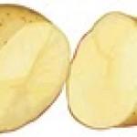 iki-yarim-patates