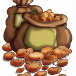 patates-resimleri