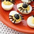 yumurtadan-yapilan-orumcek-sekli