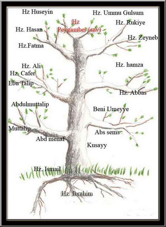 Hz Muhammedin Soy Ağaci ödevi Nazarcacom