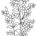 Hobiler Ve El Eşleri Için çiçek Ve Motif Eskizleri Nazarcacom