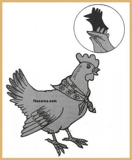 elimizi-kullanarak-tavuk-golgesi