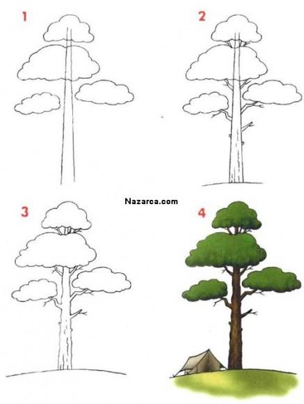 Kolay Ağaç Nasil çizilir Nazarcacom