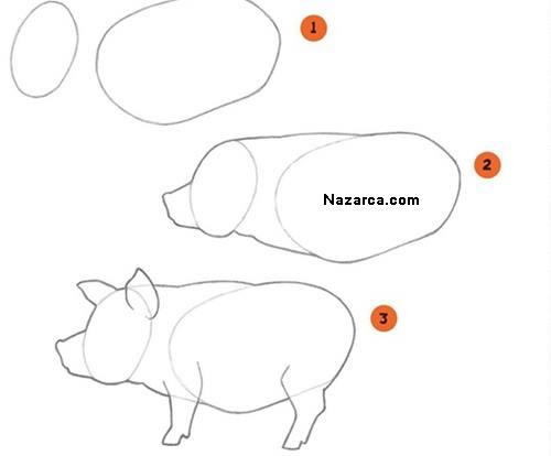 domuz-resmi-cizme