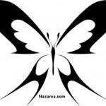 guzel-kelebek-sablonlari