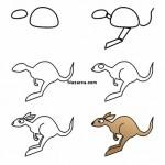 kanguru-cizimi