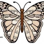 muzik-uzerinde-notolar-olan-kelebek-resmi-sablonu