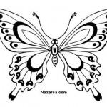 siyah-beyaz-kelebek-resimleri-sablonlari-1