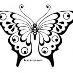 siyah-beyaz-kelebek-resimleri-sablonlari-2