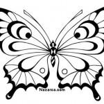 siyah-beyaz-kelebek-resimleri-sablonlari-4