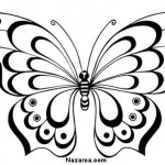 siyah-beyaz-kelebek-resimleri-sablonlari-5