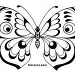 siyah-beyaz-kelebek-resimleri-sablonlari-6
