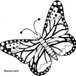 siyah-beyaz-yandan-kelebek-figuru-sablon