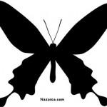 siyah-renk-kelebek-sablonu-resmi