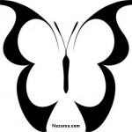siyahlı-beyazlı-kelebek-sablon-nazarca