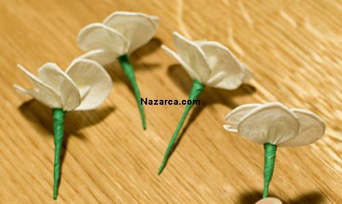 krapon-kirazcicegi-nazarcacom-1