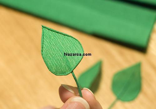 krapon-kirazcicegi-nazarcacom-3