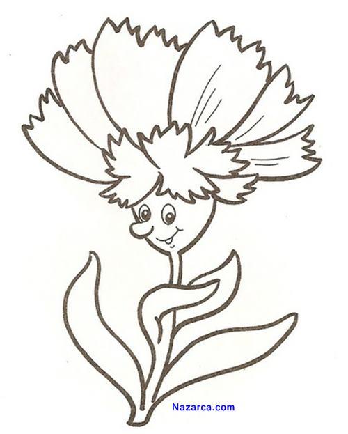 aynisini-boya-cicek-karanfil-resmi