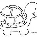 okul-oncesi-hayvan-boyama-sablonlari-kaplumbaga