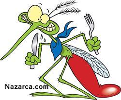 sivrisinek-isirigina-ne-iyi-gelir