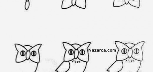 sevimli-komik-baykus-karikaturu-nasil-ciziliyor