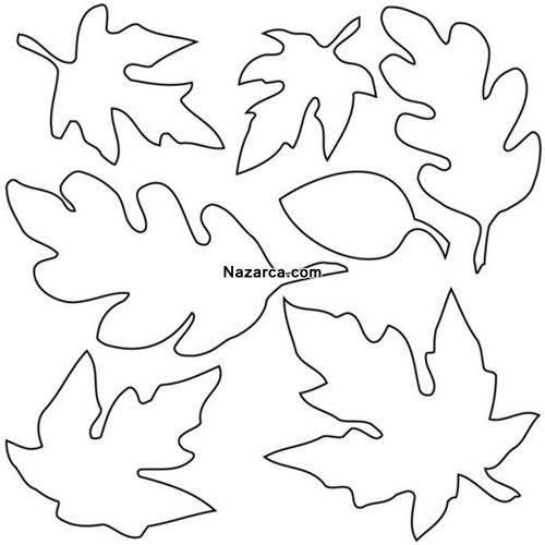 yaprak-kaliplari-nazarca