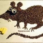 kahve-cekirdekleri-ile-fare