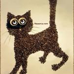 kahve-cekirdeklerinden-ayakta-duran-kedi