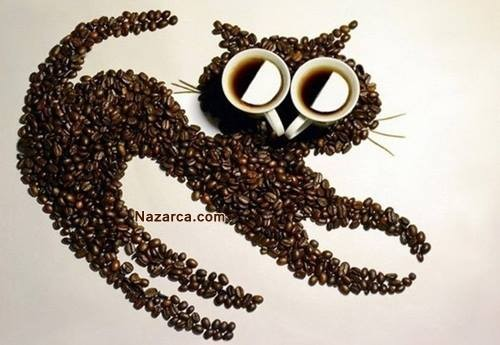 kuru-kahve-cekirdekleri-ile-kedi