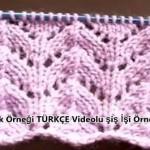ajurlu-yaprak-ornegi-turkce-videosu