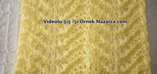 deniz-dalgasi-ornek-videosu