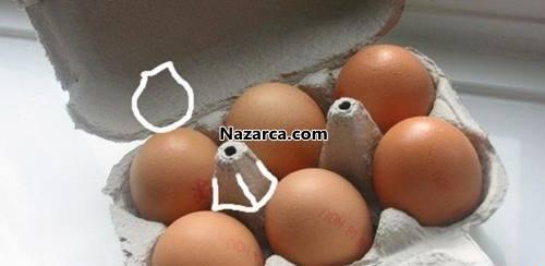 isikli-yumurta-kartonu-cicekler