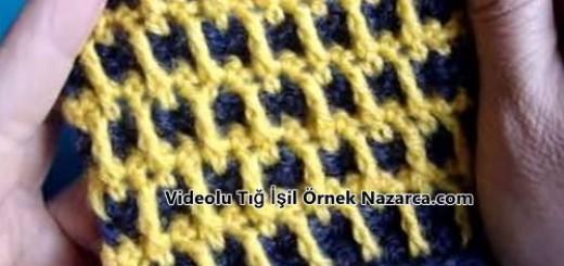 videolu-iki-renkli-damali-ornek