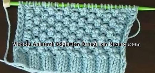 turkce-videolu-bogurtlen-ornek-anlatimi