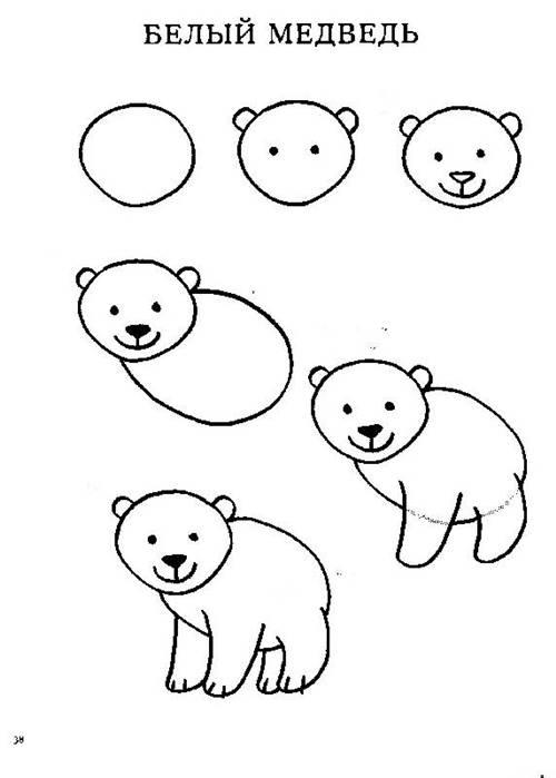 Рисунок для детей белый медведь