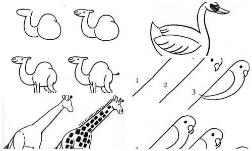 hayvan-karikaturu-resmi-nasil-cizilir-nazarca