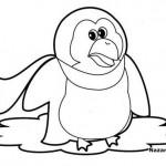 kis-boyama-penguen