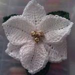 Crochet -Christmas-Flowe