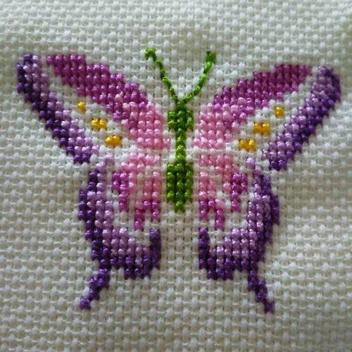 mor-kelebek-etamin-modeli